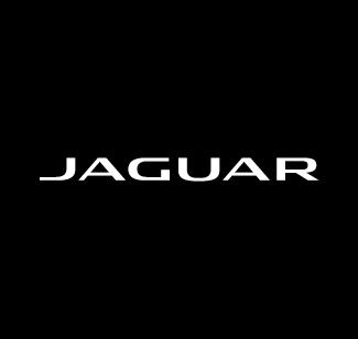 Jaguar logo bianco